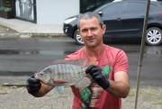 Comercialização do Peixe Vivo registra aumento em uma semana