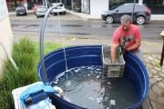 Peixes e frutos do mar serão colocados à venda em Içara