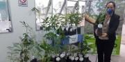 Hospital São Donato incentiva um mundo mais saudável no Dia do Meio Ambiente