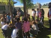 Projeto embeleza escolas com plantio de flores