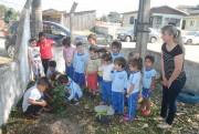 Alunos do CEI Sonho Infantil plantam mudas de árvore