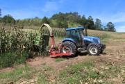 Agricultura de Urussanga segue com o trabalho de silagem