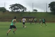 Tigre duela com o Avaí nesta quarta-feira na Ressacada