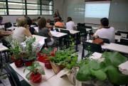 Projeto Fitoterapia Racional encerra atividades de 2018