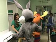 Crianças participam de mais um Mutirão de Cirurgia Pediátrica