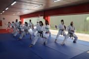 Karatecas de Içara conquistam o troféu geral do Campeonato Virtual de Karatê
