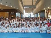 Competição virtual de karatê chega à região Sul de Santa Cararina