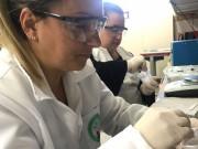 Professores recebem treinamento em laboratório
