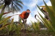 Taxa de desemprego em Santa Catarina cai para 5,3%, a menor do Brasil