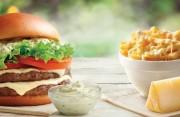 McDonald's reforça plataformas de sucesso com Lançamentos