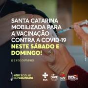Estado organiza mutirão para imunizar a população contra a Covid-19