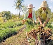 Case de sucesso de produtor rural de Imaruí é selecionado a nível nacional