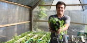 Jovem içarense prepara a primeira safra comercial de lúpulo no Município