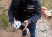 Polícia Civil fecha o cerco contra o tráfico de drogas