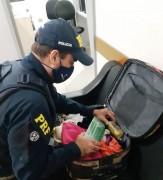 Polícia Rodoviária Federal prende mulher com 1,5kg de maconha na BR-101