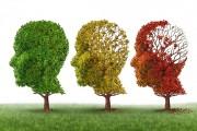 Projeto Bem Viver com Alzheimer promove encontro