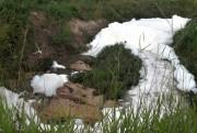 Espuma aparece novamente no rio Três Ribeirões