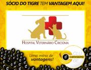 Hospital Veterinário Criciúma em parceria com o Clube Carvoeiro