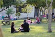 Parque Ecológico de Maracajá será revitalizado
