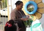 "Projeto ""Escola Empreendedora"" fará venda de orgânicos"