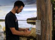 Visitantes poderão interagir virtualmente com Museu de Zoologia