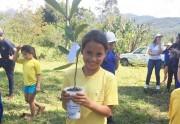 Sicoob Credija celebra Dia da Árvore com plantio de mudas