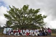 Sicoob Credija promove Dia de Cooperar nesta sexta-feira