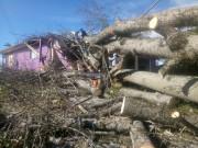 """Rapidez no atendimento aos atingidos pelo """"ciclone bomba"""" em Urussanga"""