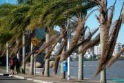 Estado de Santa Catarina tem onda de frio intenso durante a semana