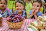 Alunos visitam parreirais e aprendem sobre alimentação saudável