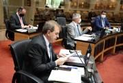 PEC reduz prazo para resposta a pedidos de informação sobre pandemia