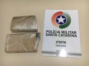 Cão da Polícia Militar encontra drogas em Criciúma