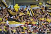 Criciúma Esporte Clube completa 73 anos de glória com descontos na Loja Tigre Maníacos