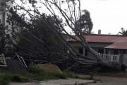 Árvore cai sobre veículo em Vila Nova devido a temporal