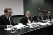 Comissão de Educação aprova audiência sobre os Cedups