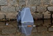 Boletim aponta aumento de casos de febre de chikungunya