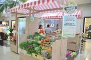 Feirinha Colonial traz produtos orgânicos ao Farol Shopping