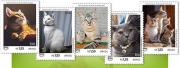 Correios lança selos sobre animais de estimação
