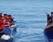Entrada de imigrantes pelo Mediterrâneo cai pela metade, diz organização