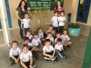 Escolas de Siderópolis recebem mudas de árvores da Famsid