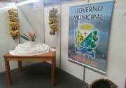 Siderópolis será destaque na Agroponte nesta sexta-feira