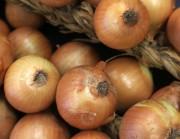 Governo Federal aumenta imposto para importação de cebola