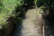 Içara terá plano de preservação da Mata Atlântica e do Rio Içara