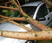 Vendaval causa danos em cinco comunidades de Maracajá
