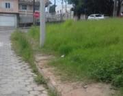 Crianças caminham na estrada por conta do mato na calçada