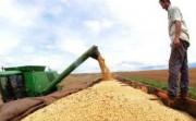 Covid-19: China pede que empresas de alimentos elevem estoques