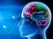 Leve a Neurolinguística para o seu dia a dia profissional