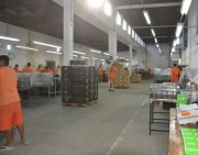 Empresas catarinenses destacam-se com ações sociais no sistema prisional