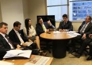Dóia acompanha prefeitos tucanos do Sul em Brasília