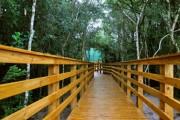 Parques estaduais são alternativa para quem quer fugir da folia